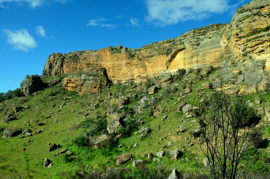 Парк Ни сало ни мясо — национальный парк Изало на Мадагаскаре Ни сало ни мясо — национальный парк Изало на Мадагаскаре DSC 5628