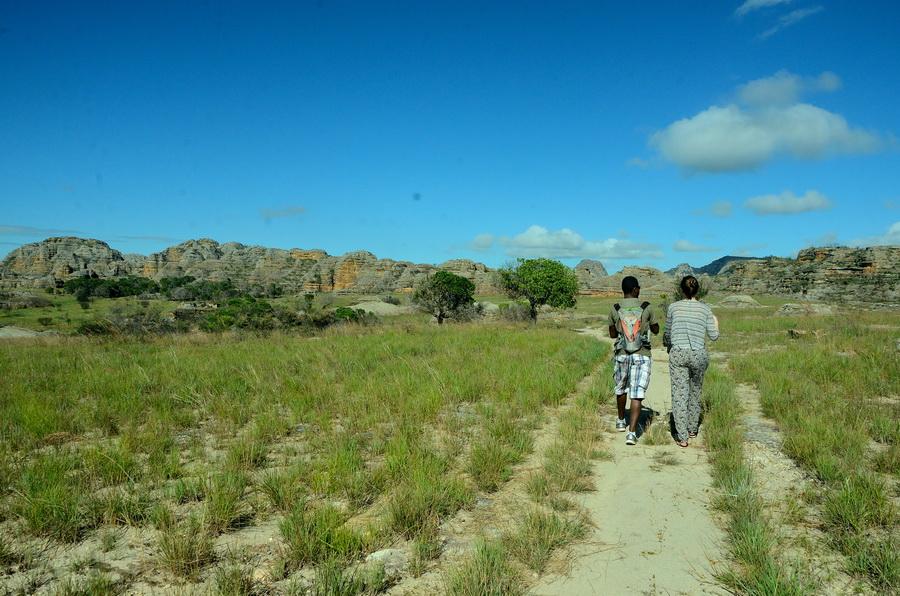Прогулка Ни сало ни мясо — национальный парк Изало на Мадагаскаре Ни сало ни мясо — национальный парк Изало на Мадагаскаре DSC 5630