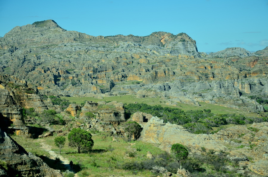 Горы Ни сало ни мясо — национальный парк Изало на Мадагаскаре Ни сало ни мясо — национальный парк Изало на Мадагаскаре DSC 5635