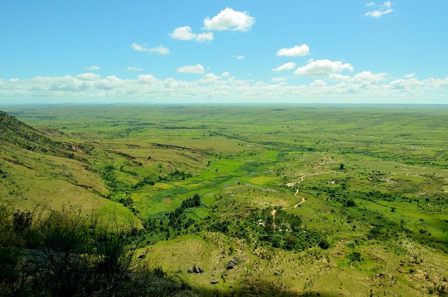 Равнина Ни сало ни мясо — национальный парк Изало на Мадагаскаре Ни сало ни мясо — национальный парк Изало на Мадагаскаре DSC 5683
