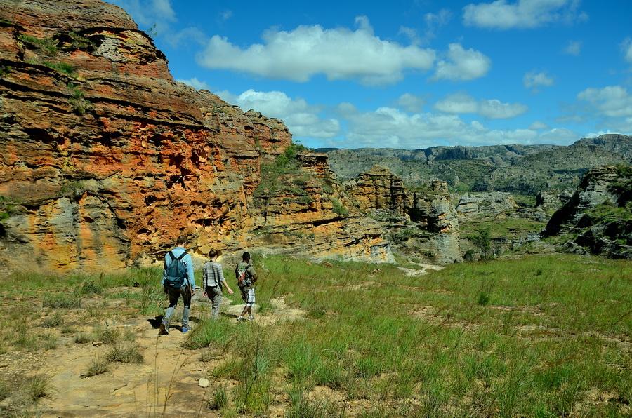 Песчаник Ни сало ни мясо — национальный парк Изало на Мадагаскаре Ни сало ни мясо — национальный парк Изало на Мадагаскаре DSC 5717