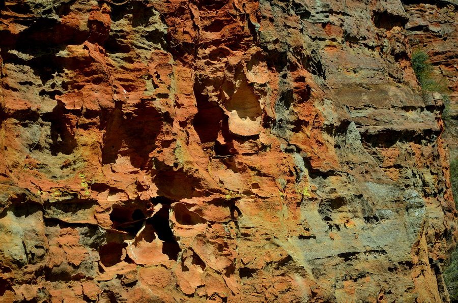 Песчаник Ни сало ни мясо — национальный парк Изало на Мадагаскаре Ни сало ни мясо — национальный парк Изало на Мадагаскаре DSC 5718